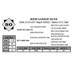 Lot 80 - RED LINED 5172