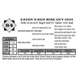 Lot 84 - EATON`S RED WISE GUY 1534