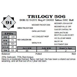 Lot 91 - TRILOGY 506