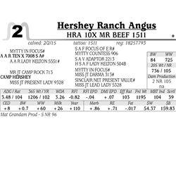 Hershey Ranch Angus