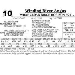 Winding River Angus