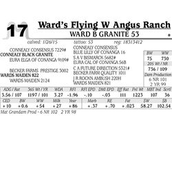 Ward's Flying W Angus Ranch