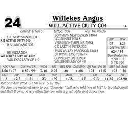 Willekes Angus