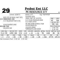 Probst Ent LLC