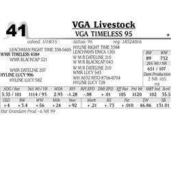 VGA Livestock