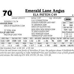 Emerald Lane Angus