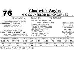 Chadwick Angus