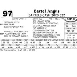 Bartel Angus