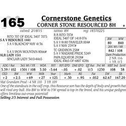 Cornerstone Genetics