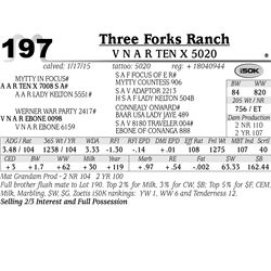 Three Forks Ranch