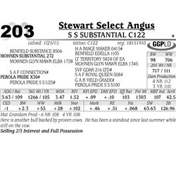Stewart Select Angus