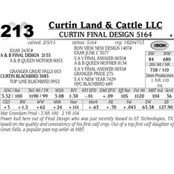 Curtin Land & Cattle LLC