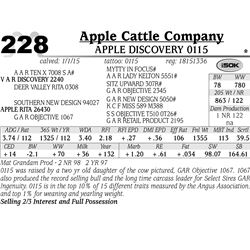 Apple Cattle Company