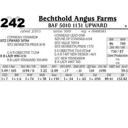 Bechthold Angus Farms
