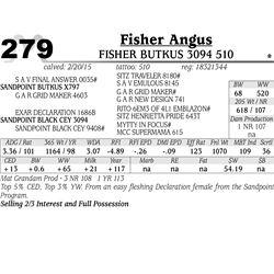 Fisher Angus