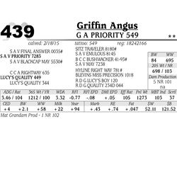 Griffin Angus