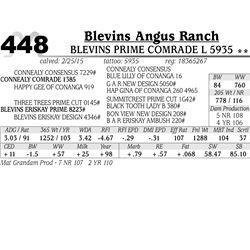 Blevins Angus Ranch