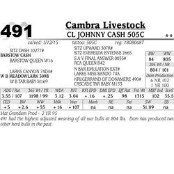 Cambra Livestock