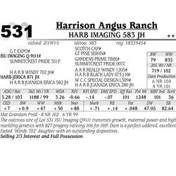 Harrison Angus Ranch