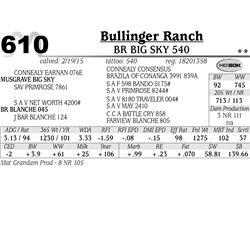 Bullinger Ranch