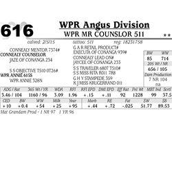 WPR Angus Division