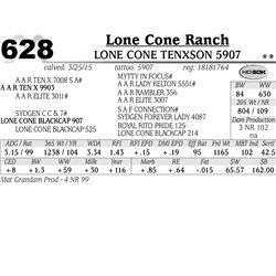 Lone Cone Ranch