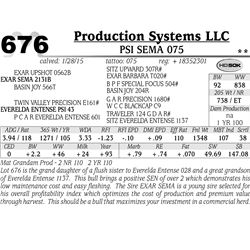 Production Systems LLC