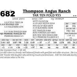 Thompson Angus Ranch
