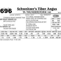 Schweitzer's Tiber Angus