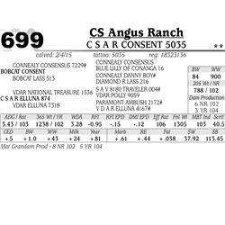 CS Angus Ranch