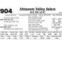 Ahtanum Valley Salers
