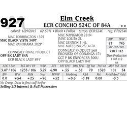 Elm Creek