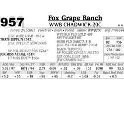 Fox Grape Ranch
