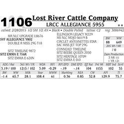 Lost River Cattle Company
