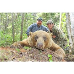 6-Day Fully Guided Spring Black Bear Hunt in Alberta, Canada for One (1) Hunter