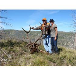 2017 Utah Book Cliffs, Little Creek Roadless Multi Season Conservation Elk Permit