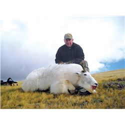 2017 Utah North Slope/South Slope, High Uintas Central Mountain Goat Conservation Permit