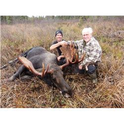 Moose, Black Bear and Wolf Combination Hunt