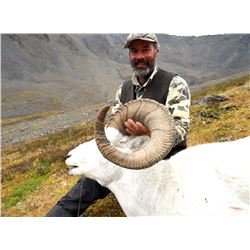 2017 or 2018 Horseback Dall Sheep Hunt in Alaska