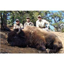 2017 Utah Statewide Bison Conservation Permit
