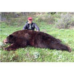 2017 Utah Statewide Bear Conservation Permit