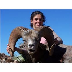 10-Day Desert Bighorn Sheep 2017 or 2018