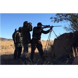 TEXAS PISTOL & RIFLE ACADEMY: 2-Day/2-Night Long Range Rifle Training for Two Shooters