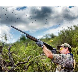 TREK INTERNATIONAL: 4-Day High Volume Dove Hunt for Two Hunters in Argentina