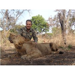 HIGH MOUNTAIN HUNTS/ FARO EAST: 10-Day Lion and/or Elephant Hunt for One Hunter in Cameroon