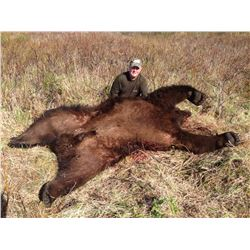 H& H ALASKAN OUTFITTERS: 10-Day Coastal Brown Bear Hunt for One Hunter in Kodiak, Alaska - Includes
