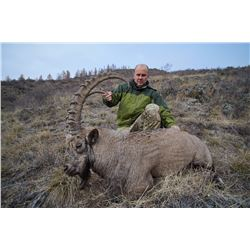 PROFIHUNT: 7-Day Altai Ibex Hunt for One Hunter in the Altai and Khakassia Republics of Russia - Inc