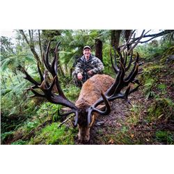 WILDERNESS QUEST: 6-Day Red Stag and Fallow Deer Hunt for One Hunter and One Non-Hunter in New Zeala