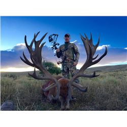 ALGAR SAFARIS:  5-Day/6-Night Red Stag Hunt for Two Hunters and Two Non-Hunters in Argentina - Inclu