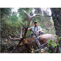 HEAVEN'S GATE OUTTFITTER: 8-Day Combo Elk and Mule Deer BOW Hunt for Two Hunters in Idaho